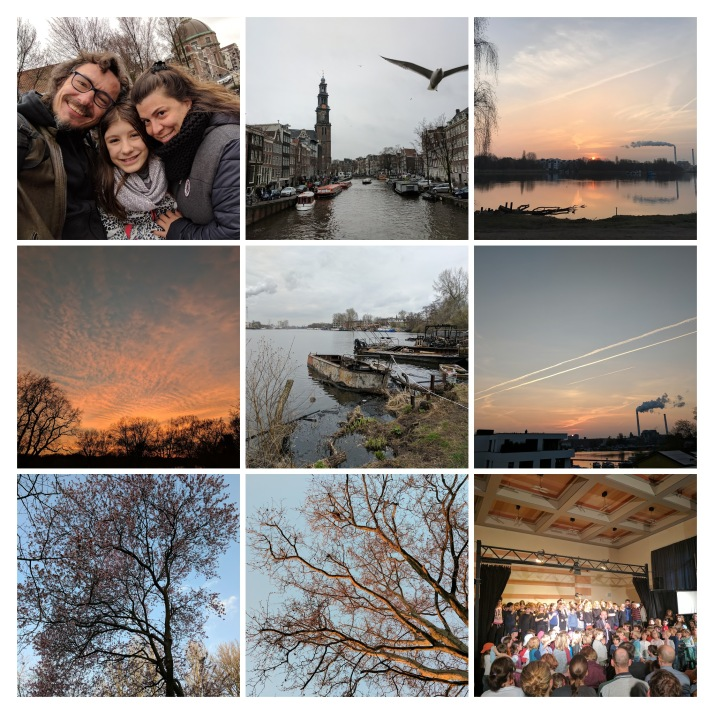 IMG_8654-COLLAGE